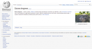 screen Wikipedia - Dziura Drogowa 1