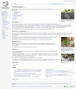 screen Wikipedia - Dziura Drogowa 2