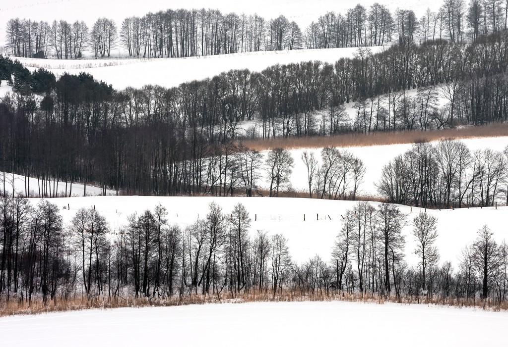 miejsce 1. Suwalski Park Krajobrazowy, okolice Szurpił (fot. Pawel Wojtyczka)