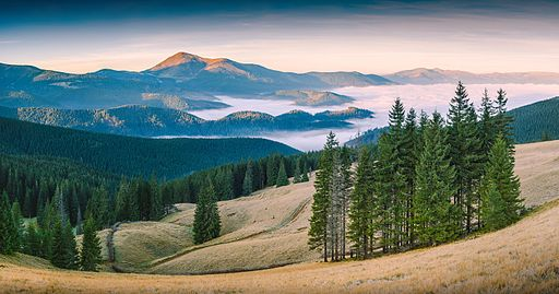 Miejsce szóste: Karpacki Rezerwat Biosfery, Zakarpacie, Ukraina. Fotografia autorstwa użytkownika $user, podretuszowana przez użytkownika Iifar, dostępna na licencji CC-by-SA 4.0